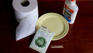 seed tape supplies