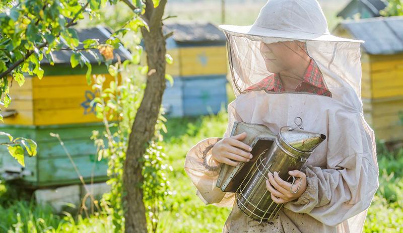 kid beekeeper