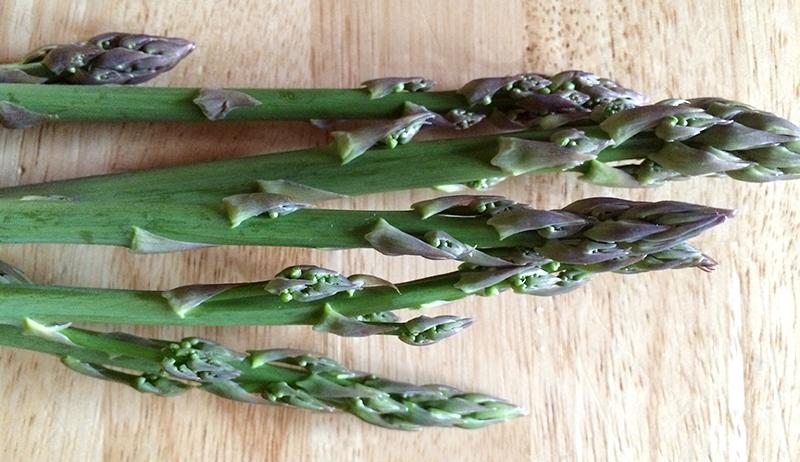 asparagus food independence