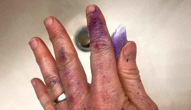 purple stained hands blu-kote