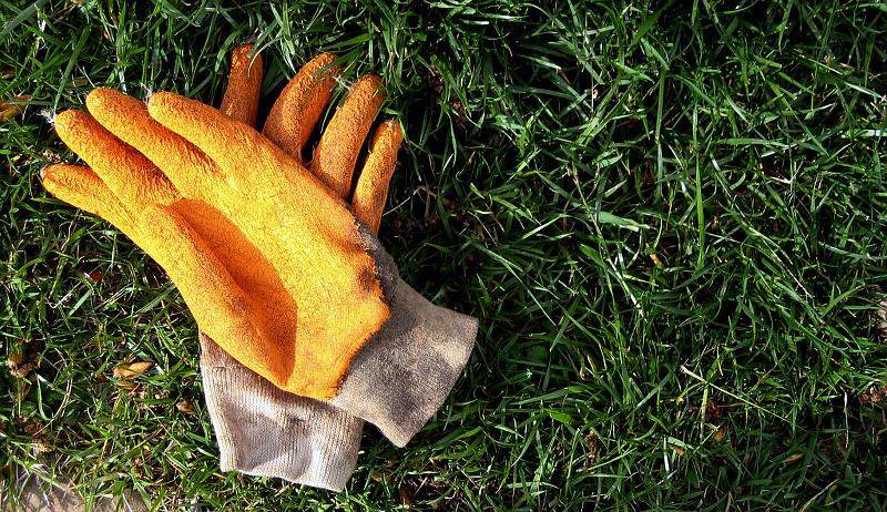 farm clothing gloves
