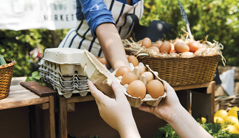 eggs marketing selling poultry farming