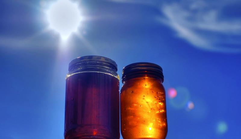 fall last honey harvest