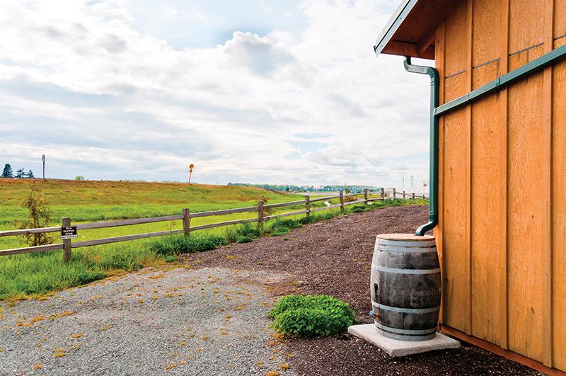 water conservation rain barrel