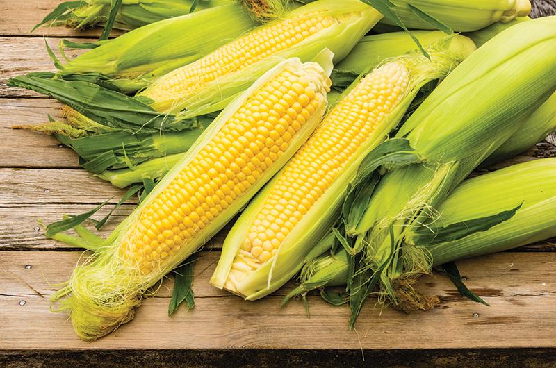 market crops sweet corn