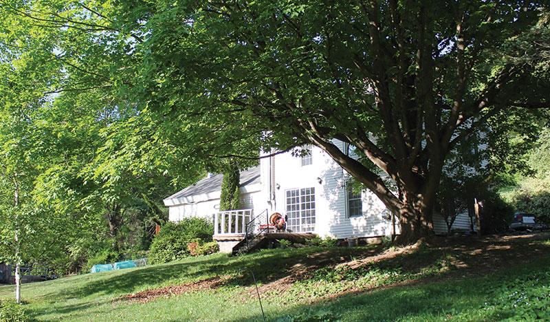 cold antler farm house