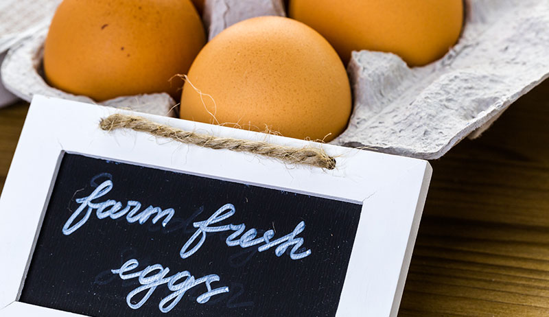 chicken ownership egg sales