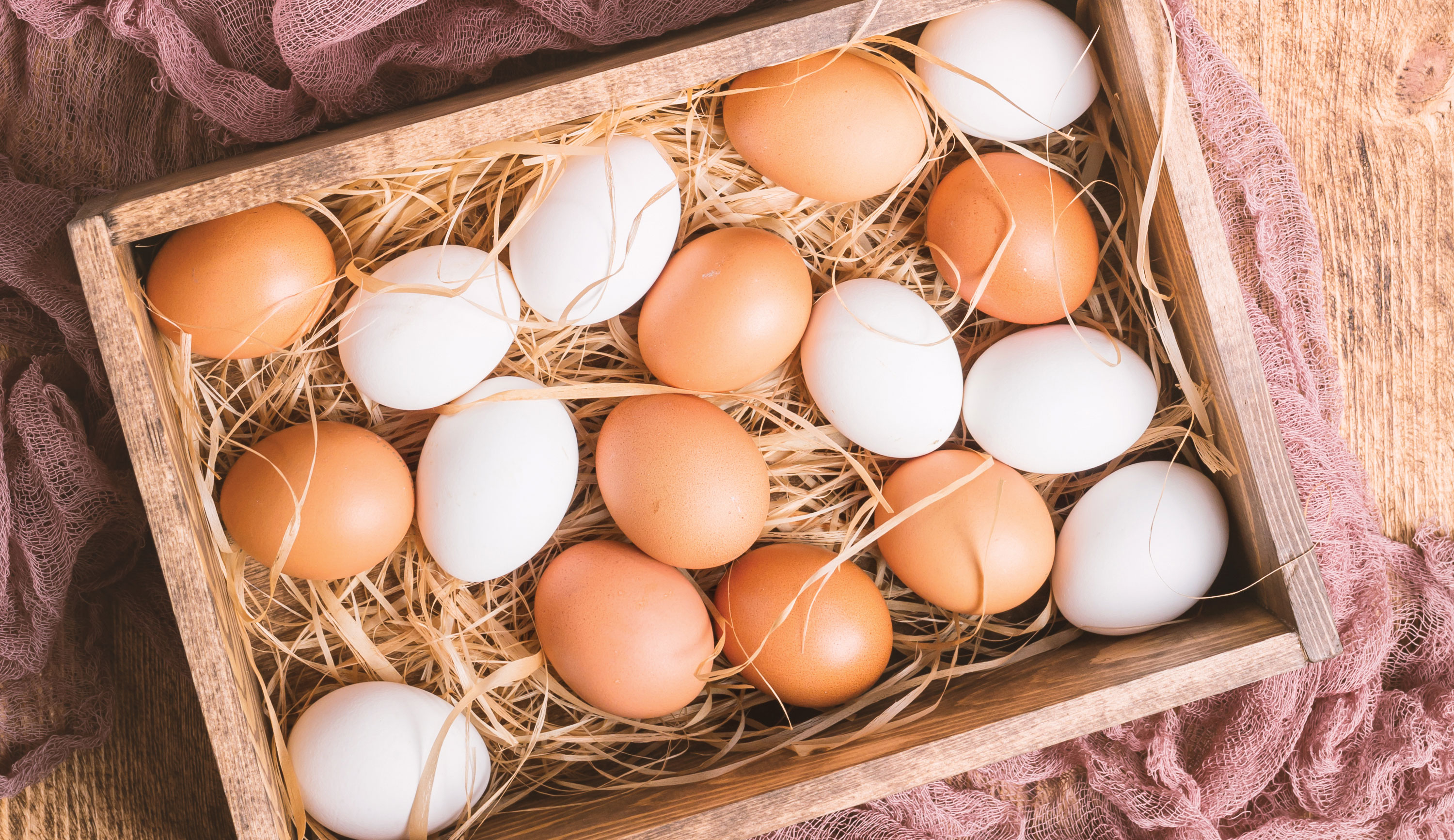 eggs all year round