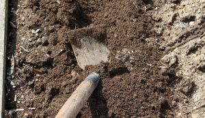 taking a soil test garden gardening