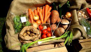 csa planning plant vegetables