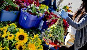 flowers farmers market CSA profitable