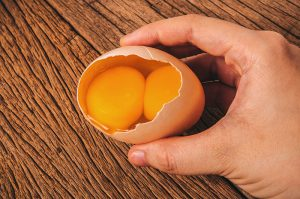 common questions eggs double yolk