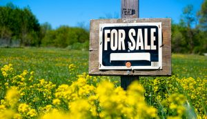 farm equipment online classifieds