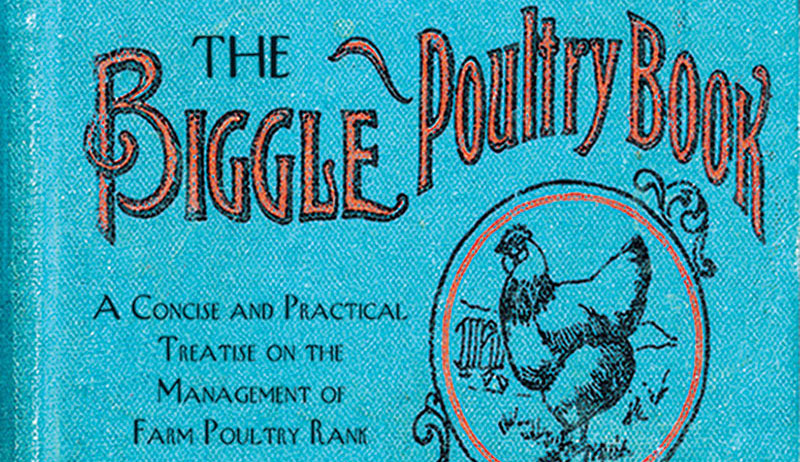 biggle poultry book cover chickens history
