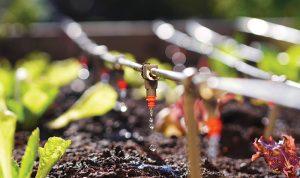 farm equipment gardening off the grid drip irrigation