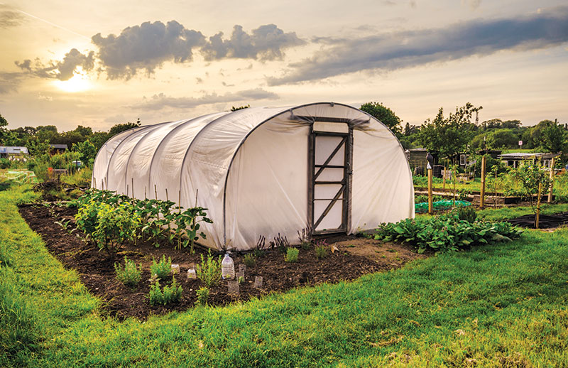 gardening off the grid greenhouse