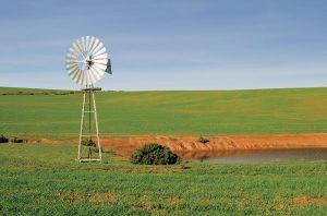 gardening off the grid windmill