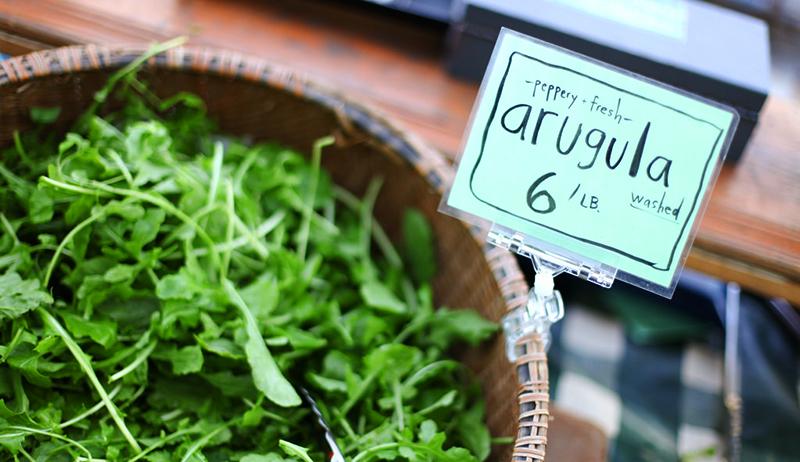 arugula early spring crops
