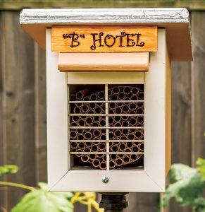 pollinators mason bee house