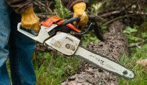 chainsaw storm debris cleanup