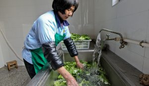 farm sanitation