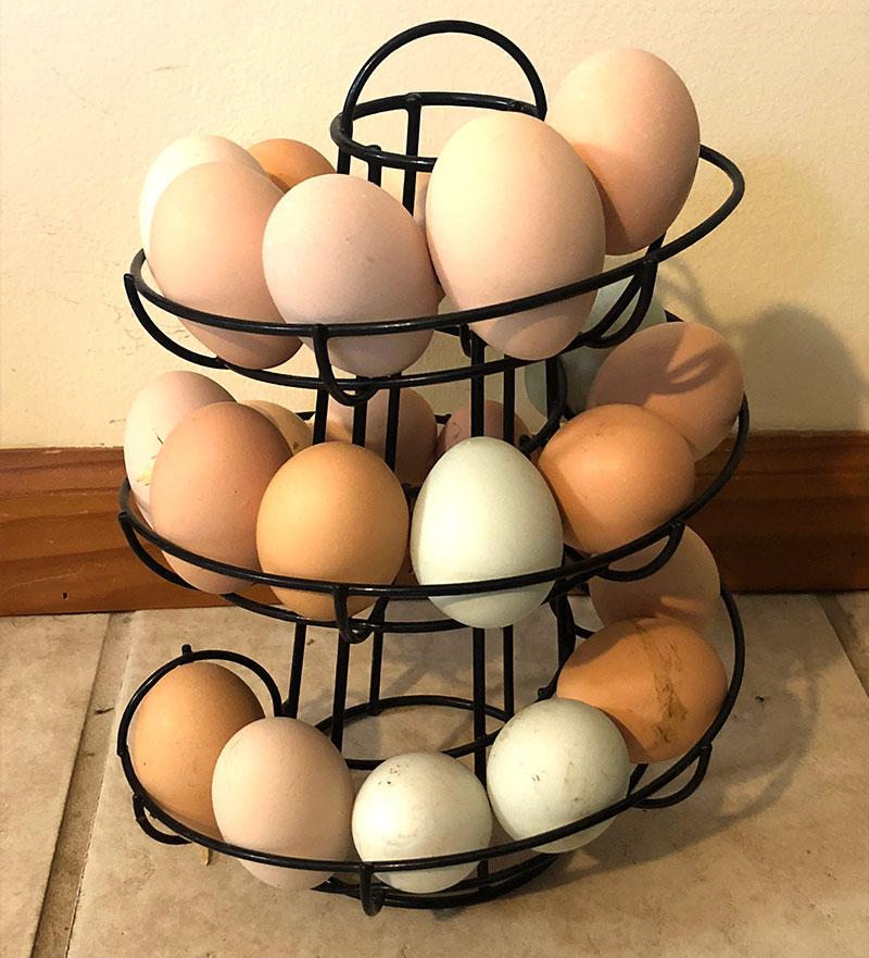 egg gadgets slider