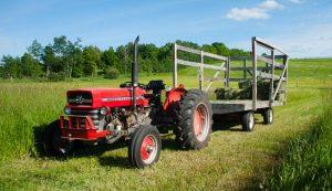restored tractors massey ferguson