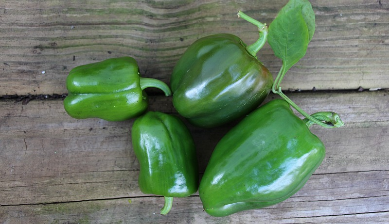 how to grow more peppers dry farming