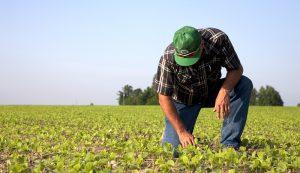 mental health farmers farming