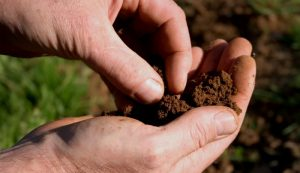 improve soil improvements