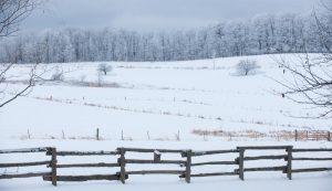 new years farming-related resolutions hobby farm farmer