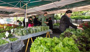 living as a farmers market farmer farming business crops summer