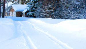 cold weather farm tips polar vortex