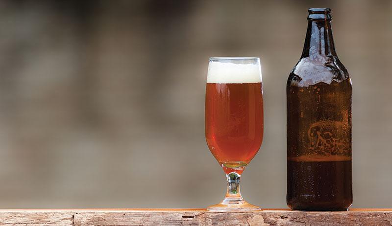 beer home brewing brew ale herbs