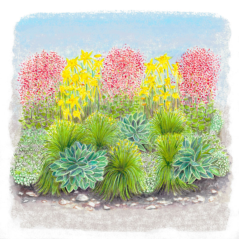 Fabulous Flowers and Foliage Shade Garden