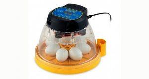 tabletop mini incubator