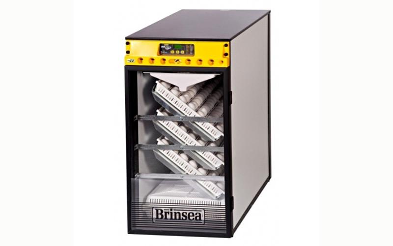 cabinet incubator