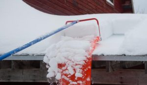 rooftop roof rake snow removal remove roofs