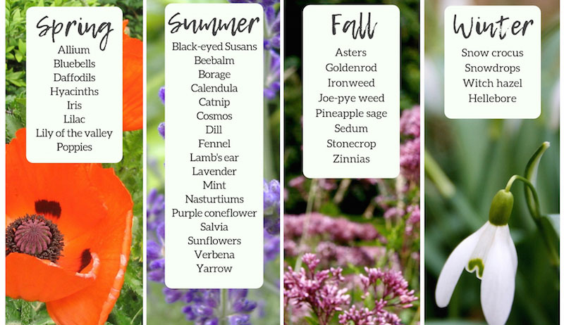 honeybee garden calendar