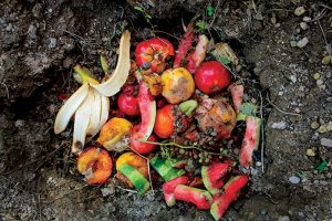 trench composting
