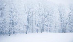 frost snow trees field farm winter machines