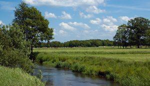 water quality stream farm