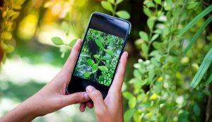 online marketing farm e-newsletters
