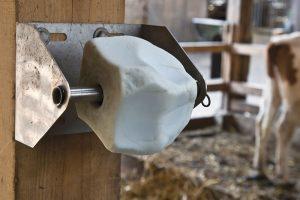 livestock nutrition vitamins minerals salt lick