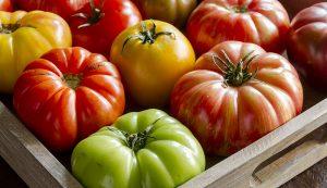 heirloom tomatoes vegetables