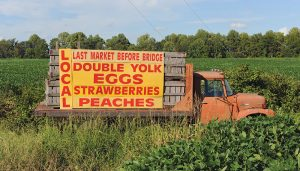 double-yolk eggs truck sign