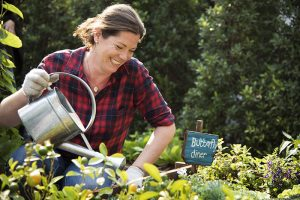 garden gardener Shutterstock natural landscape health