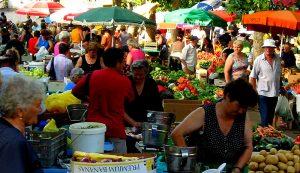 farmers market farm business