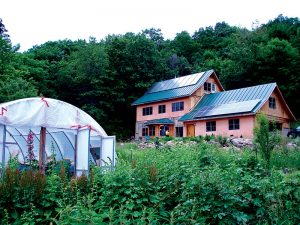 solar panels renewable energy greenhouse