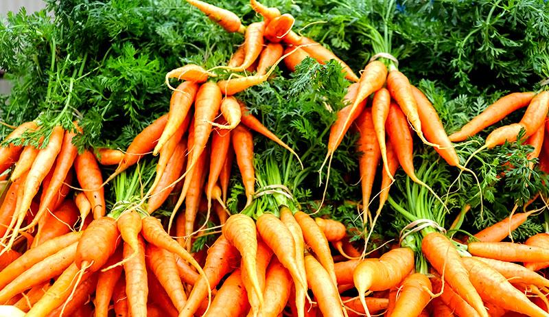 carrots marketing tips